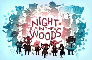 Night in the wood